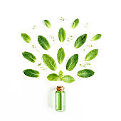 Essential oil and greenmint leaves on white background. Medicinal herbs. Flat lay. Top view