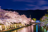 Kyoto, Japan on the Okazaki Canal during the spring cherry blossom season