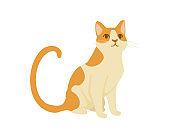 Cute cartoon animal design red striped domestic cat adorable animal flat vector illustration