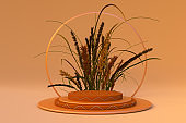3d render of product display podium stand with dry autumn plants. Abstract beige background scene with geometric shape.