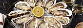 Oysters panorama. A platter with a dozen oysters with lemon