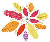 Yellow and red autumn leaves beauty of nature vector flat illustration isolated on white background, fall foliage drawing composition.