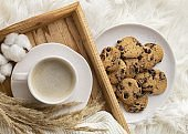 top view cup coffee with cookies cotton flowers. High quality and resolution beautiful photo concept