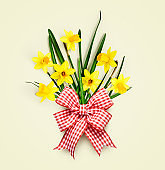 Yellow daffodils with bow ribbon spring flowers on bright background