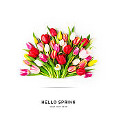 Creative layout of beautiful tulip flowers bouquet. Hello spring concept