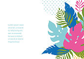 Poster with jungle exotic leaves and place for text. Cartoon vector illustration, banner, art print .