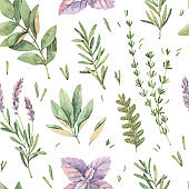 Watercolor seamless pattern with botanical green leaves, herbs, branches. Fabric with illustrations of basil, thyme, sage, lavender. Perfect for textile, package, wrapping paper, invitations, prints
