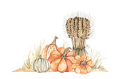 Watercolor Autumn harvest illustrations with pumpkins, wheat bouquet and yellow grass. Fall elements. Perfect for invitations, greeting cards, posters, prints, social media