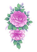 Hand drawn bunch with pink rose flowers