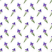 Cute seamless pattern of iris flowers. Bright spring and summer print with green leaves. Holiday decorations and elements for cards, weddings, holidays and design