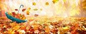 Carpet of fallen orange autumn leaves in park and blue umbrella.
