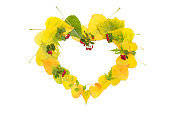 Autumn concept. The heart of yellow leaves on a white isolated background.