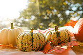 Pumpkins and orange falling leaves on windowsill on a sunset in Autumn sunny day