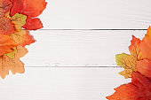 autumn background with colored leaves on white wooden board
