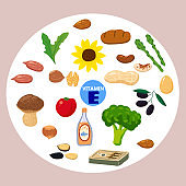 Set of Vitamin K origin natural sources. Healthy diary food, green vegetables, berries, fish, mushrooms, eggs. Organic diet products, natural nutrition collection. Vector flat cartoon