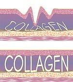 Collagen fibers condition in skin tissue. Conceptual 3D CG illustration.