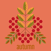 Lettering autumn, fall leaves, berries. Autumn banner for advertising, sales. Vector illustration in orange, green and brown colors, an pink background.