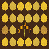 Lettering Hello autumn, fall leaves. Autumn banner for advertising, sales. Vector illustration in yellow and brown colors.