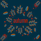Lettering autumn, fall leaves, berries. Autumn banner for advertising, sales. Vector illustration in orange and brown colors, an blue background.