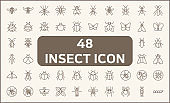 Set of 48 insect and bug line style.