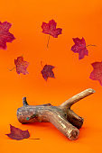 Empty wooden podium and falling red maple leaves on orange background. Autumn holiday sale mockup. Piece of wood for cosmetic product display. Fall composition. Thanksgiving or Halloween background