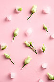 Flowers and ice cubes on pink background top view. Minimal flat lay style composition.