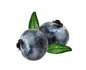 Blueberries with leaves isolated on white background with clipping path