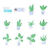 Pack of Indoor Plants Flat Vectors