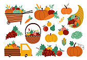 Autumn harvest set. Vector farm vegetables, fruit and berry collection with pumpkins, carrot, apple, cabbage, corn, pear, grapes. Funny fall illustration with basket, truck, wheelbarrow, cornucopia