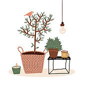 Pastel color composition with small potted tree, hot beverage in mug, candle and houseplant isolated on white. Cozy hygge scene with lamp, cup of coffee, plant. Vector flat cartoon illustration