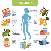 Healthy food for human body concept with female silhouette. Healthy eating infographics. Food and drink for the good functioning of the internal organs. Vector flat ilustration.
