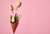 Yellow tulips in ice cream cone on pink background, copy space. Spring minimal concept. Womens Day, Mothers Day, Valentine's Day, Easter, birthday. Nature background. Flat lay, top view