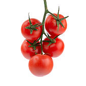 ripe tomatoes on the vine, white insulated background