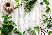 Assortment of fresh aromatic herbs from above on white wooden background. Mint, thyme, basil, rosemary, top view.
