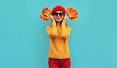 Autumn portrait of happy smiling young woman with yellow maple leaves wearing a knitted sweater, red beret on blue background