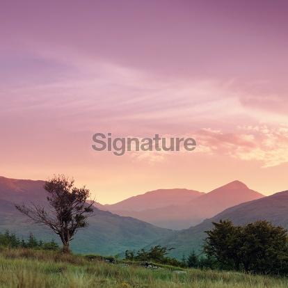 Summer dusk in Ireland