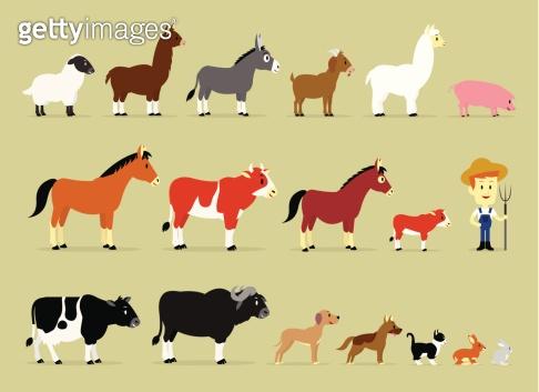 Cute Cartoon Farm Characters