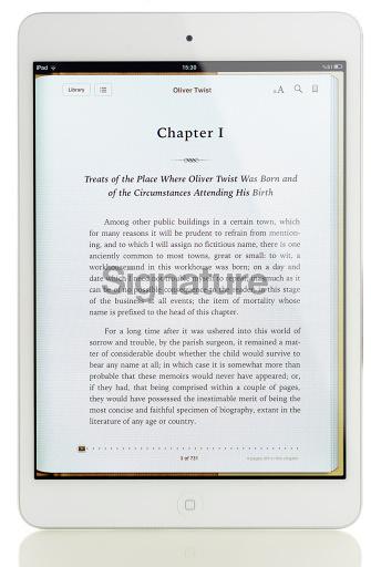 iBook on iPad Mini