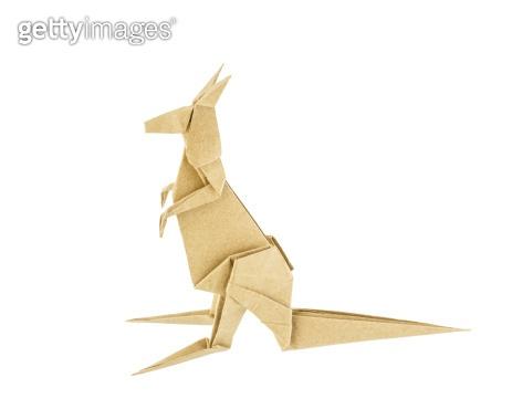 Origami kangaroo recycle paper