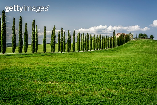 Road with Cypresses to agritourism in Tuscany