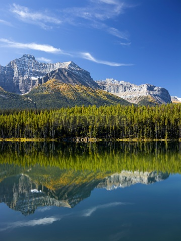 Herbert Lake reflecting the Canadian Rockies and fall colour Larches