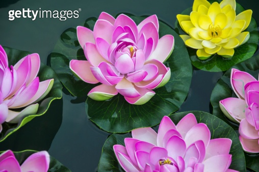 Small artificial lotus flowers