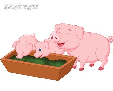 Happy farm pig family cartoon
