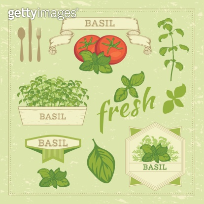 basil leaves and tomato