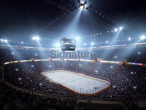 Hockey stadium arena