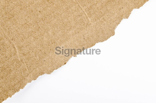 Ripped Cardboard on White Background