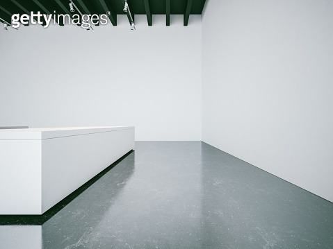 Open space gallery interior with empty walls, lights and black
