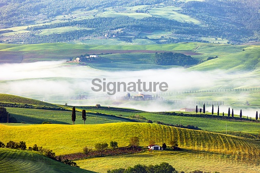 Rolling Landscape With Morning Fog in Tuscany