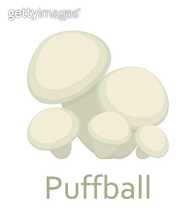 Edible mushrooms flat icon. Puffball. Vector illustration.