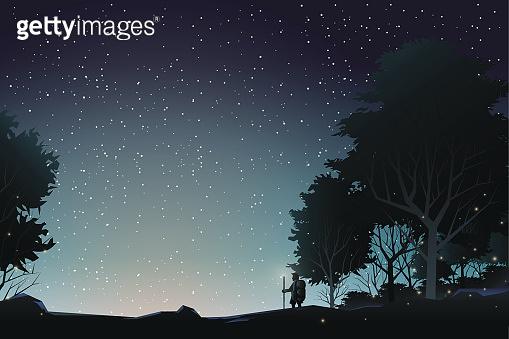 adventurer journey to watch star in forest